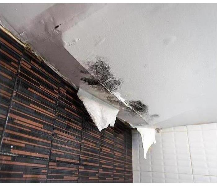 water damaged walls and ceilings