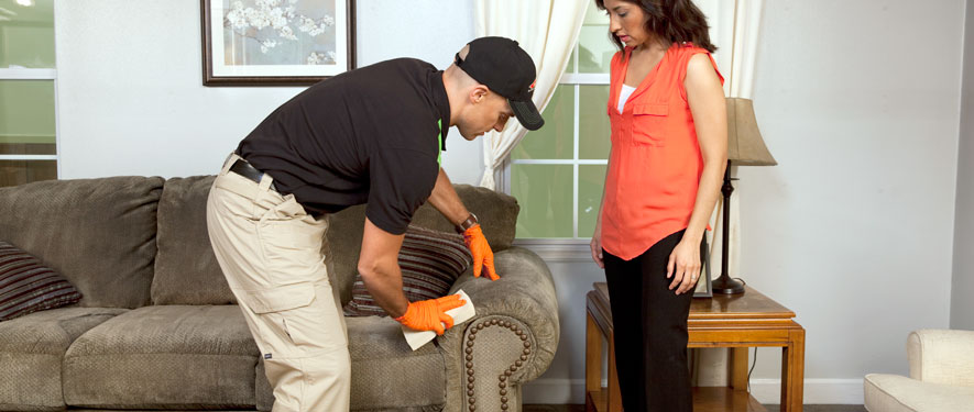 Houston, TX carpet upholstery cleaning